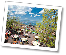 Photo of the Memorial Union Terrace in spring.
